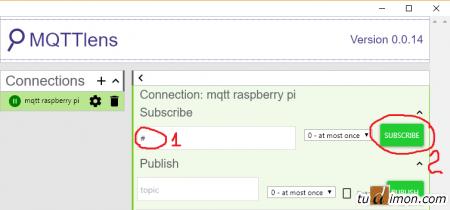 Протокол MQTT плюс Domoticz